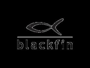 http://www.blackfin.eu/